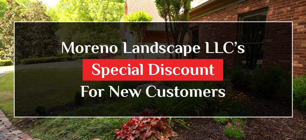 Blog by Moreno Landscape LLC