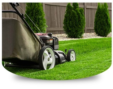 Lawn Care Services Stone Mountain